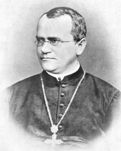 Abt Gregor Mendel | Quelle: Wikimedia